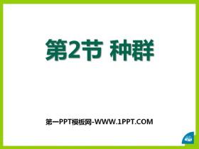 《种群》PPT课件