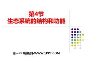 《生态系统的结构和功能》PPT教学课件