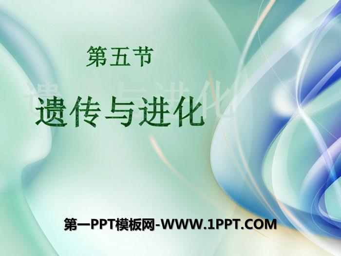 《遗传与进化》PPT课件