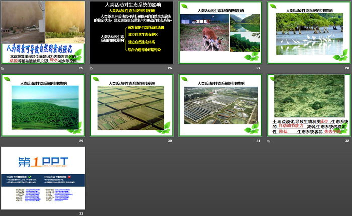 《生态系统的稳定性》PPT课件tt娱乐官网平台