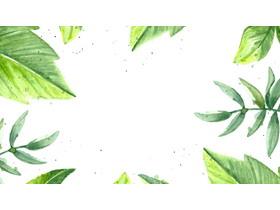 水彩绿叶PPT背景图片