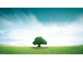 唯美草地绿树PPT背景图片