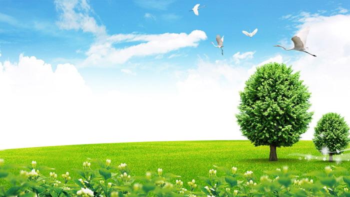 四张蓝天白云草地绿树ppt背景图片图片