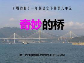 《奇妙的桥》PPT