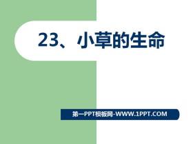 《小草的生命》PPT�n件
