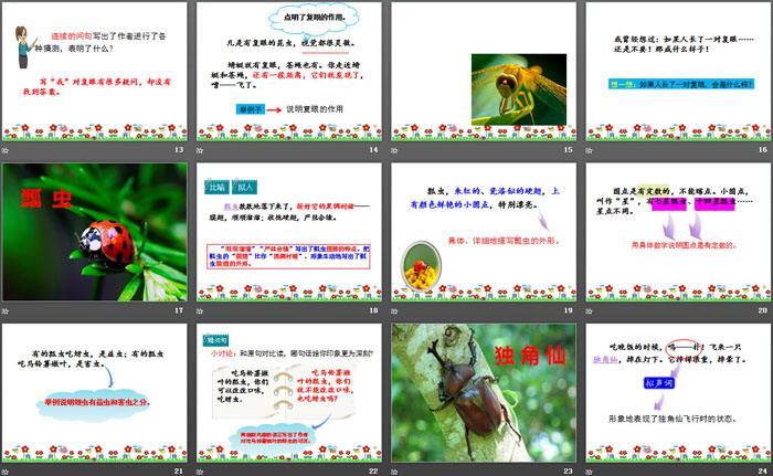 英语ppt主题_《昆虫备忘录》PPT课件 - 第一PPT
