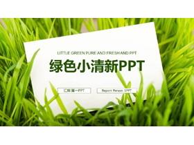 �G草白色卡片背景的清新工作���PPT模板