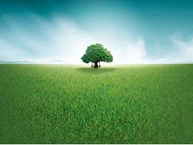 草原绿树PPT背景图片