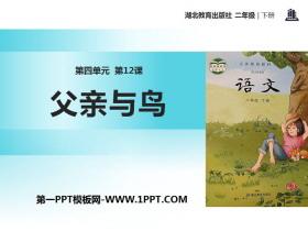 《父亲和鸟》PPTtt娱乐官网平台
