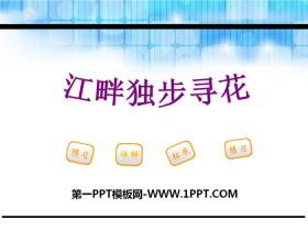 《江畔独步寻花》PPT下载