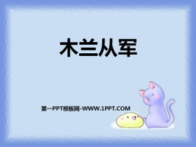 《木�m�能�》PPT