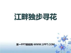 《江畔独步寻花》PPT教学课件