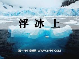 《浮冰上》PPT