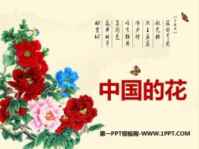《中国的花》PPT