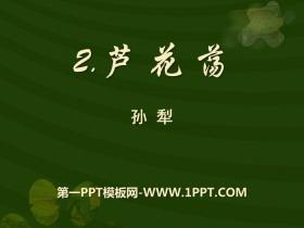 《芦花荡》PPTtt娱乐官网平台