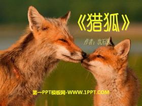 《�C狐》PPT