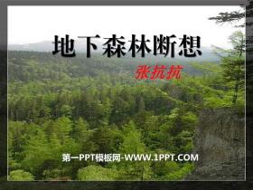 《地下森林断想》PPT