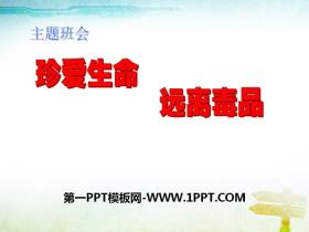 《珍爱生命 远离毒品》PPTtt娱乐官网平台