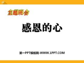 《感恩的心》PPT免费tt娱乐官网平台