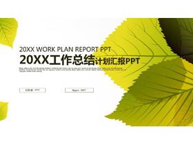 精致树叶背景的工作总结计划PPT模板