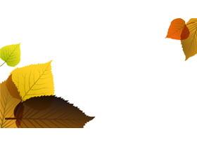 两张扁平化树叶PPT背景图片