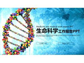 DNA分子结构图背景的生命科学PPT模板