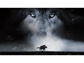 黑色狼PPT背景�D片
