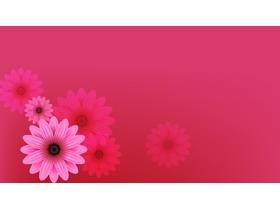 粉色唯美小花PPT背景图片