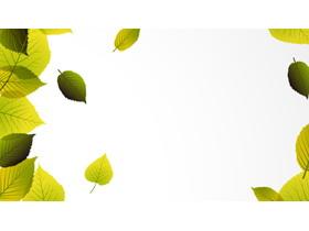 精致绿叶PPT背景图片