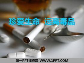 《珍爱生命 远离毒品》PPT免费下载