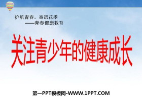 《关注青少年的健康成长》PPT