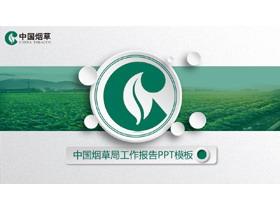 烟草植物背景的中国烟草平安彩票官网