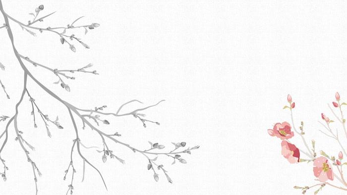 14张雅致水墨中国风ppt背景图片