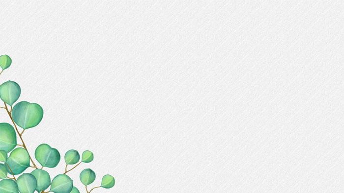 五张绿色卡通叶子PPT背景图片