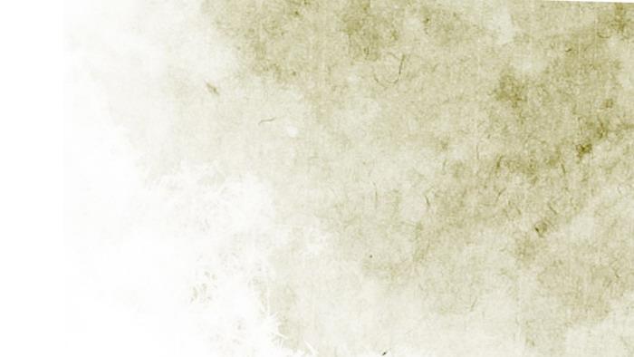 古典荷花PPT背景图片