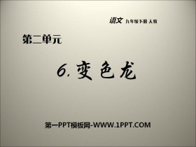 《变色龙》PPT课件免费下载