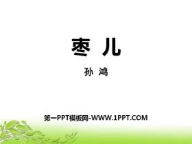《枣儿》PPT免费课件