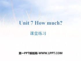 《How much?》课堂练习PPT