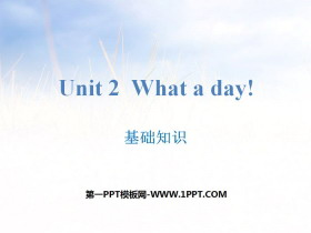 《What a day!》基础知识PPT