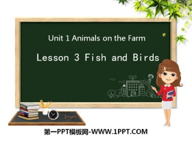 《Fish and Birds》Animals on the Farm PPT