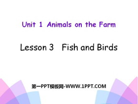 《Fish and Birds》Animals on the Farm PPT教�W�n件