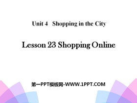 《Shopping Online》Shopping in the City PPT
