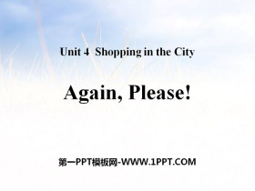 《Again,Please!》Shopping in the City PPT