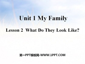 《What Do They Look Like?》My Family PPT课件