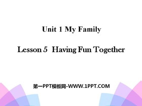 《Having Fun Together》My Family PPT