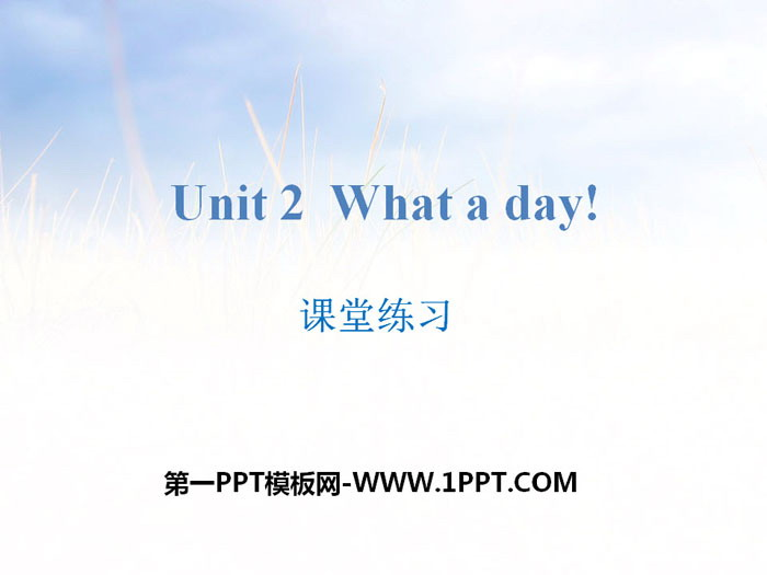 《What a day!》课堂练习PPT