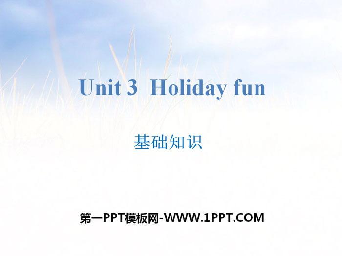 《Holiday fun》基础知识PPT