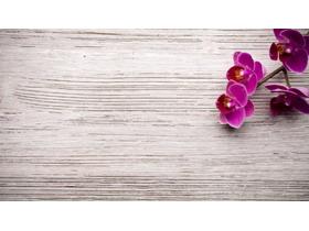 木板小花PPT背景图片