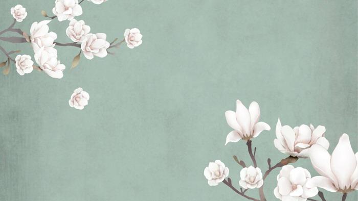 四张唯美艺术花卉幻灯片背景图片
