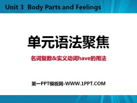 《单元语法聚焦》Body Parts and Feelings PPT